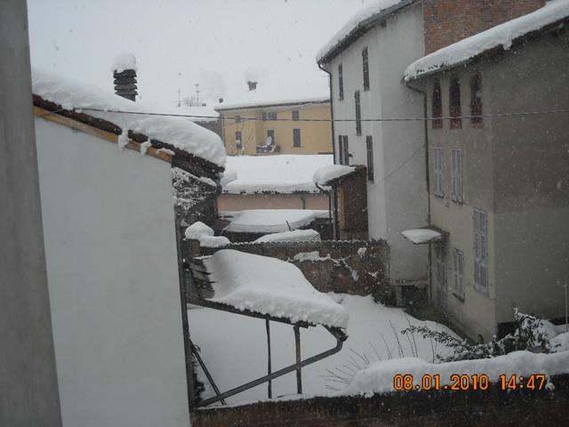 Fresonara d'inverno